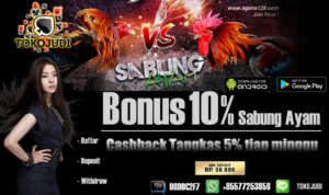 Tokojudi.com Agen Judi Sabung Ayam Online Bonus Deposit